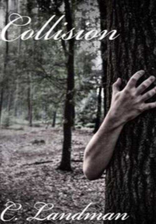 Cover of Collision