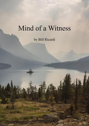 Cover of Mind of a Witness