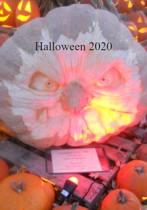 Cover of Halloween 2020